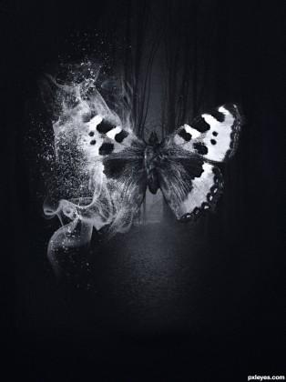 Butterfly-Spirit