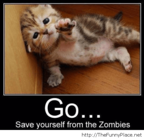 Funny-zombie-messages-with-a-kitty