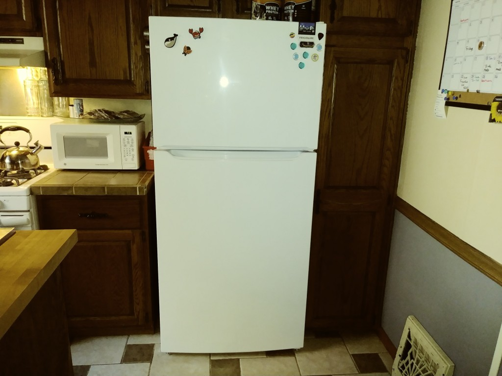 This image has an empty alt attribute; its file name is fridge.jpg